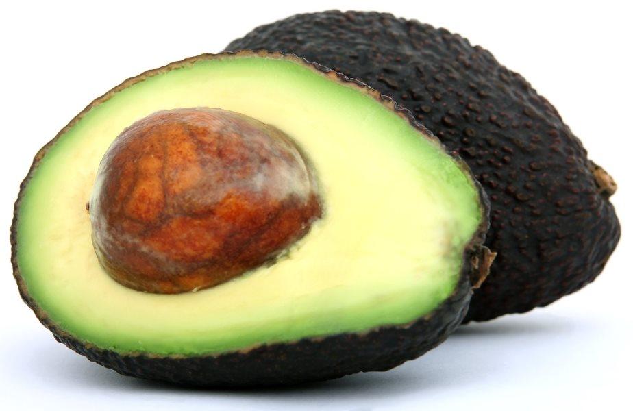 Plant dit eget avocadotræ