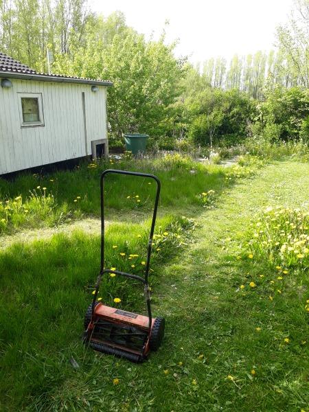 Græsslåmaskine til vild have