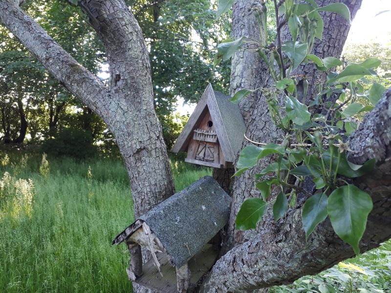 Redekasser til havens vilde fugle