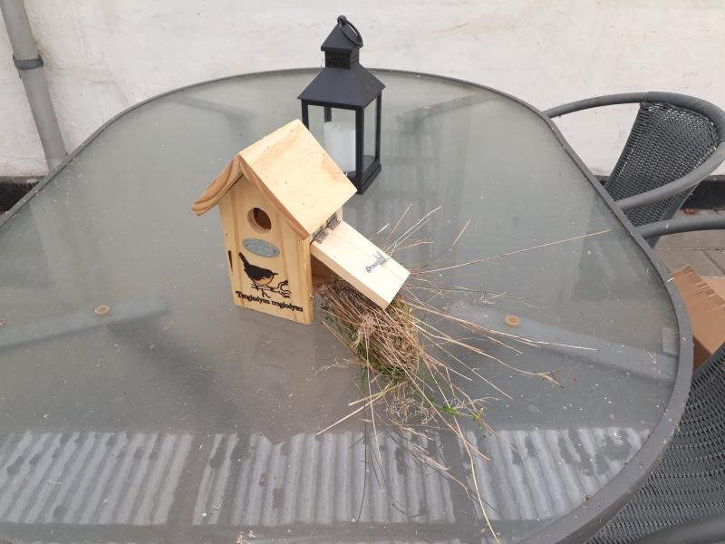 Fuglekasse til gærdesmutte
